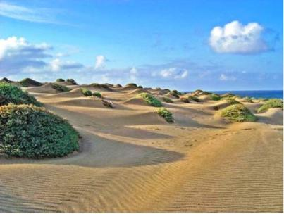 Quasi un deserto